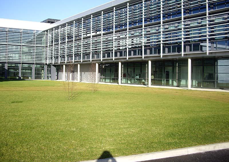 Grass grid end result grass system