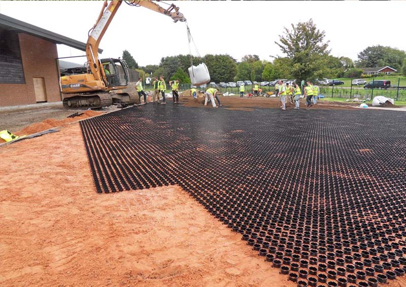 Grass grid laying grass system